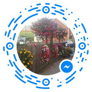 messenger_code_1579244225647251